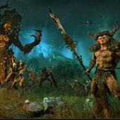 Total-War---Warhammer---Realm-of-The-Wood-Elves-2.jpg