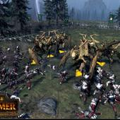 Total-War---Warhammer---Realm-of-The-Wood-Elves-9.jpg